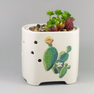 Ceramic-succulent-plant-pots-diffuser-GLEA20149S