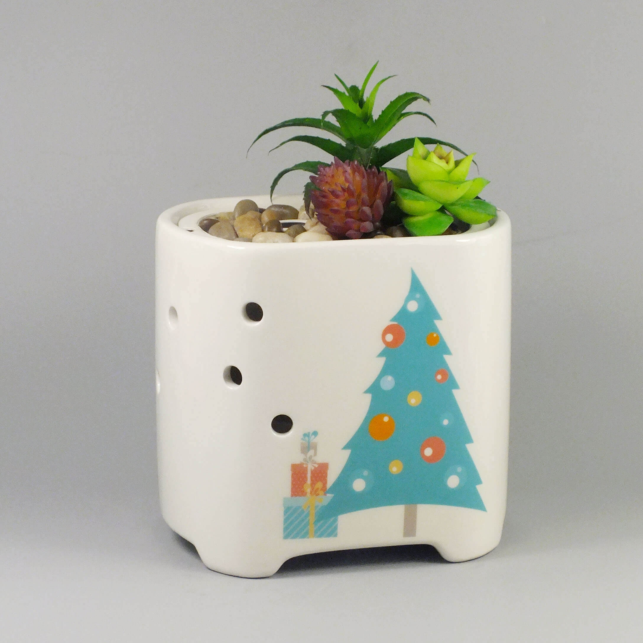 Succulent-plant-color-changing-humidifier-GLEA20138S