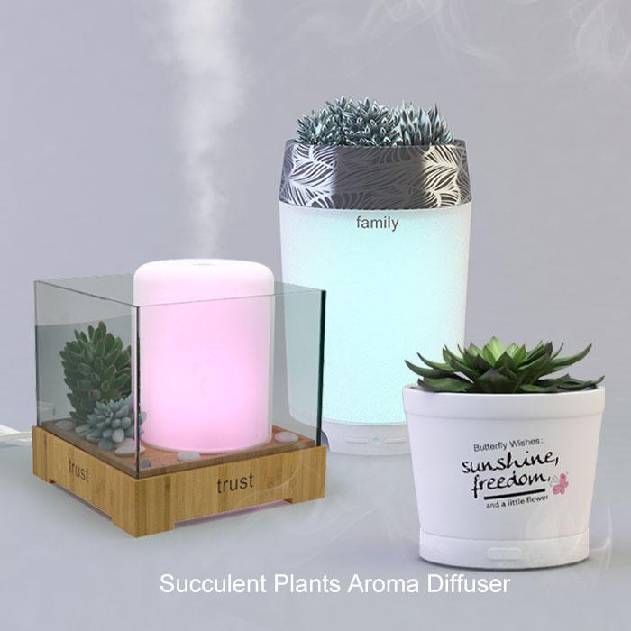 Succulent-Plants-Aroma-Diffuser